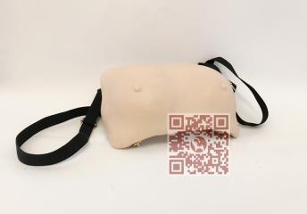 高级技法检查乳房ET/F7A-乳房视触诊检查模郭润文模型图片